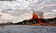 Antarctica-Other organisms-Blood Falls by Peter Rejcek