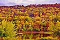 Bloomsburg, Pennsylvania during foliage season - panoramio (4).jpg