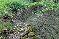 Bošířany ruiny budov (1).jpg