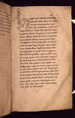 Bodleian Libraries, Cædmon Manuscript 143.jpg