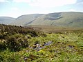 Boggy ground on Cairn Law - geograph.org.uk - 181774.jpg