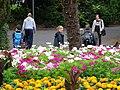 Botanic Gardens - Belfast - Northern Ireland - UK - 01 (43618602871).jpg