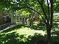 Botanic Gardens - Harvard University - DSC01439.jpg