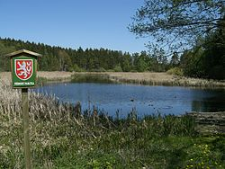 Pohled na rybník Boukal od přístupové cesty nedaleko hájenky