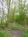 Boundary lane off Busker Lane, Scissett, Skelmanthorpe - geograph.org.uk - 787604.jpg