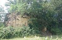 Bouzon-Gellenave - Motte féodale d'Esparsac.jpg