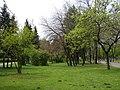 Brașov, Parcul Tractorul - panoramio (7).jpg