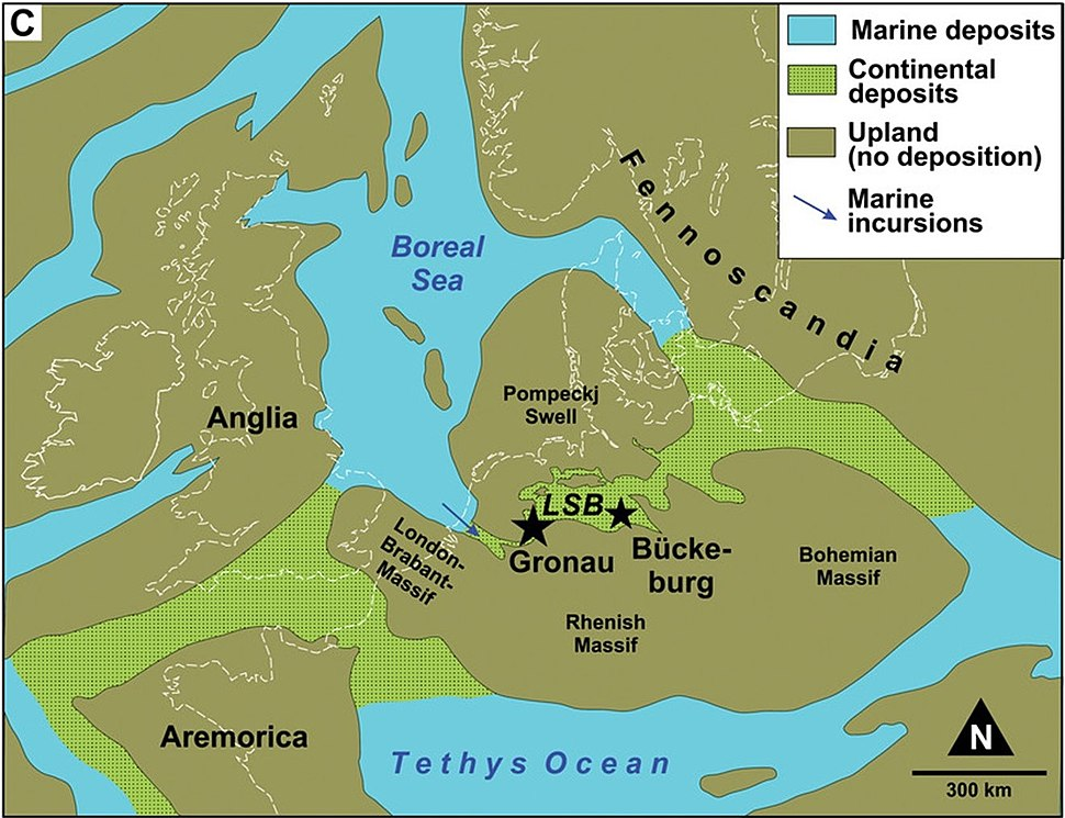 Brancasaurus map