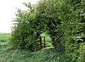 Brandywell, Sproatley - geograph.org.uk - 428565.jpg