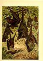 Brehms Tierleben - allgemeine Kunde des Tierreichs - mit 1800 Abbildungen im Text, 9 Karten und 180 Tafeln in Farbendruck und Holzschnitt (1890) (20388213716).jpg