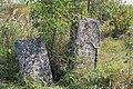 Briceni Jewish Cemetery 38.JPG