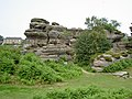 Brimham Rocks from Flickr M 13.jpg