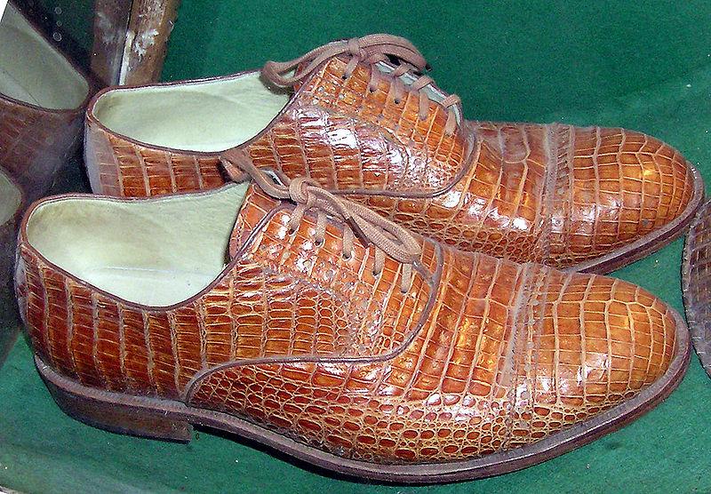 File:Bristol.zoo.crocshoes.arp.jpg