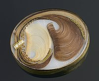 Brooch containing human hair, Europe, 1701-1900 Wellcome L0058632.jpg