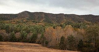 Brush Mountain East Wilderness