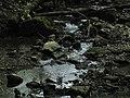 Bubovice-Srbsko - panoramio (64).jpg