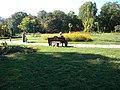 Bucuresti, Romania, Parcul Herastrau (Imagine din parc, 10); B-II-a-A-18802.JPG