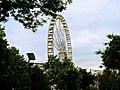 Budapest Eye.jpg