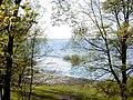 Burtnieku ezers pie Burtniekiem.jpg