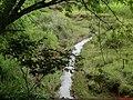Córrego Grande na Rodovia vicinal Dr. Alberto Ortenblad que liga as cidades de Tabapuã a Novais. - panoramio.jpg