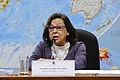 CDR - Comissão de Desenvolvimento Regional e Turismo (15856699530).jpg