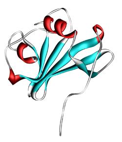 CXCL12