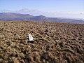 Cairn , Hesk Fell - geograph.org.uk - 340652.jpg