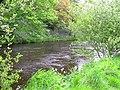 Camowen River at Cranny - geograph.org.uk - 1307888.jpg