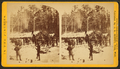 Camp at noon at L.B. Curtis & Co's, by Jenney, J. A. (James A.).png