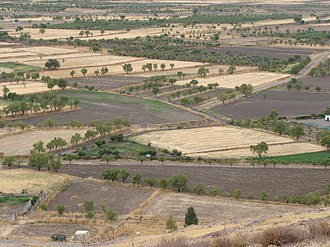 Dryland farming - Dryland farming in the Granada region in Spain