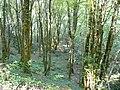 Carsac-Aillac voie verte (4).JPG