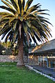 Casa escuela rural de Montegrande (11).JPG