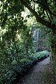 Caserta jardín inglés. 21.JPG