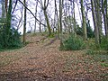 Castle Hill, Cranborne - geograph.org.uk - 1160825.jpg
