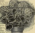 Catalogue of seeds and plants (1895) (20575307162).jpg