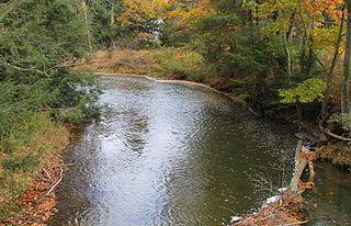 Catawissa Creek