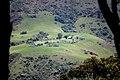 Cattle farming.jpg