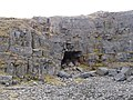 Cave entrance in disused quarry - geograph.org.uk - 1777071.jpg
