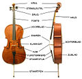 Cello Onderdelen.jpg