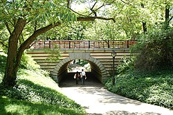 An unobtrusive bridge in Central Park, designed by Calvert Vaux, separates pedestrians from the carriage drive. No two bridges in the Park are identical.