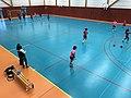 Championnat de France féminin de handball U18 - ENTENTE PAYS DE L'AIN vs LA MOTTE-SERVOLEX (2017-11-12) - 4.JPG