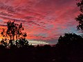 Cherry St Autumn Sunset 02.jpg