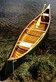 Chestnut-canoe.jpg
