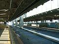 Chiba-monorail-2-Sakuragi-station-platform.jpg