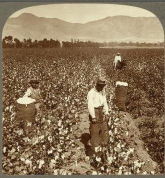 Chinese Peruvians - Chinese laborers in Peru - 1890