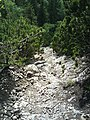 Chodník z Malého Rozsutca - panoramio.jpg
