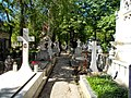 Cimitirul Bellu 24.jpg