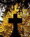"Cincinnati - Spring Grove Cemetery & Arboretum ""Cross Silhouetted in Autumn"" (4094356728).jpg"