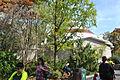 Cincinnati Zoo - Reptile House View 3.JPG