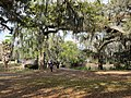 City Park New Orleans 11 March 2018 20.jpg